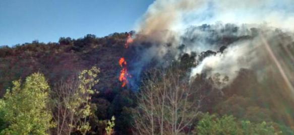 Incendio en Naicura | PDI