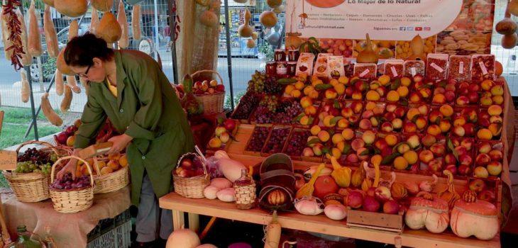 Mercado Ecológico de Santiago