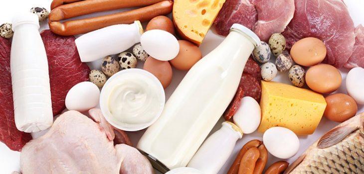 Productos de origen animal | SAG
