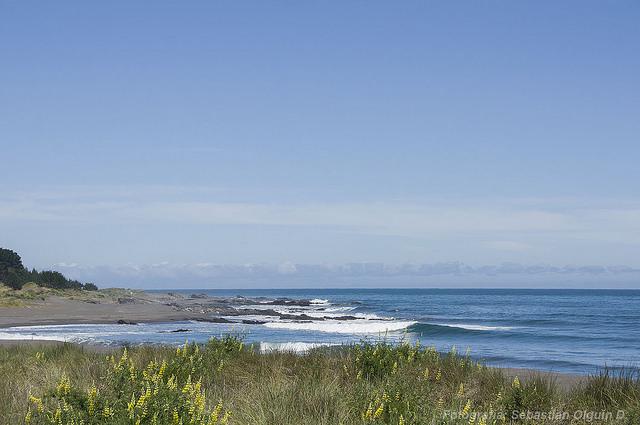 Costa de Curanipe donde se practica surf en la región del Maule. - Sebastián Olguín | Flickr (CC)