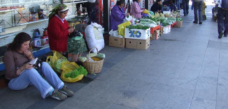 Calles de Temuco | Laucha | Flickr (CC)