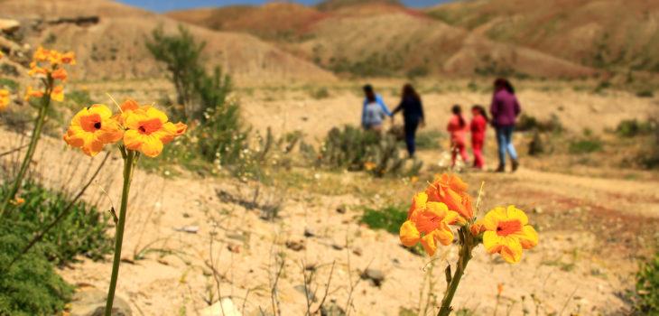 Sernatur Atacama