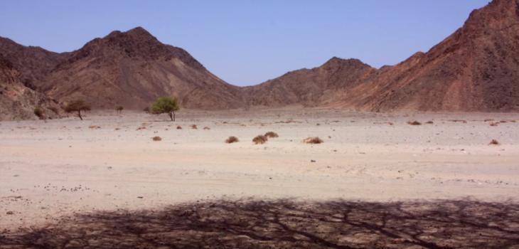 Bit Tawil | North Sudan Embassy