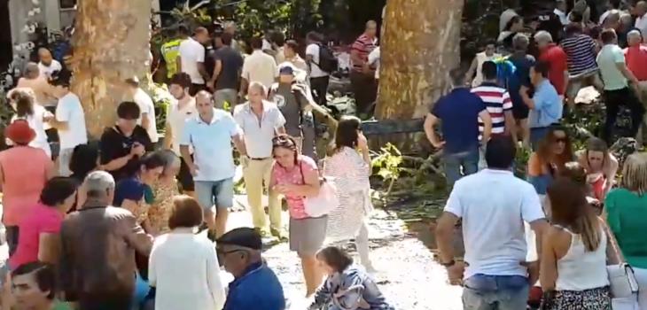 11 muertos deja caída de árbol durante festividad religiosa en Portugal