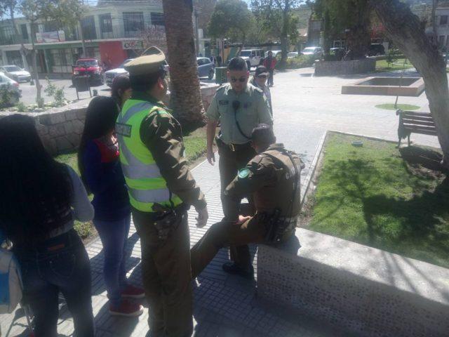 Vallenar: Carabinero le disparó a perro que lo mordió