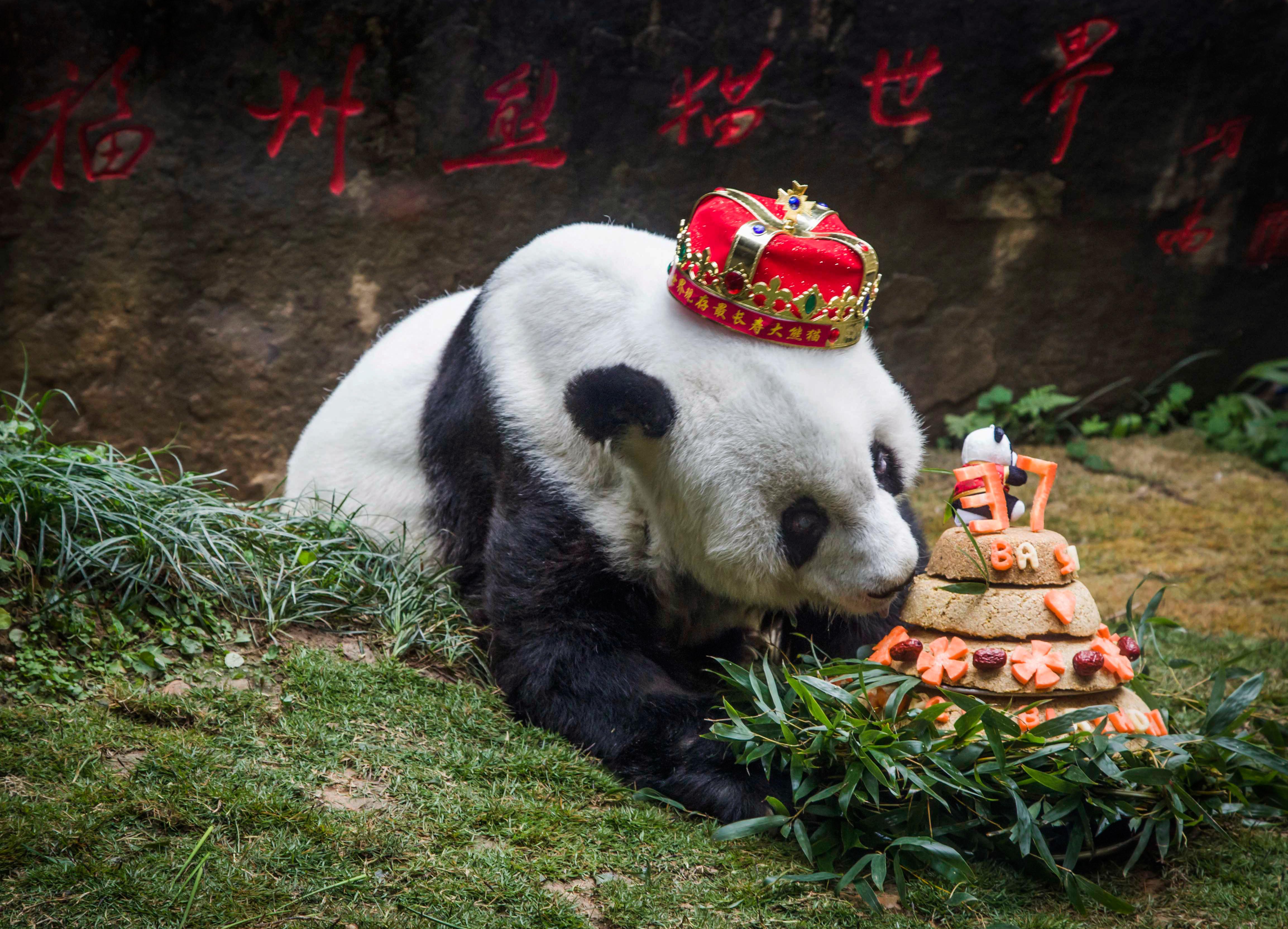 Último cumpleaños de Basi, en enero pasado | Agence France-Presse
