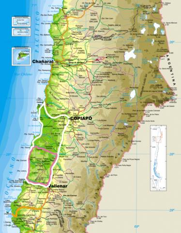 Conaf Atacama
