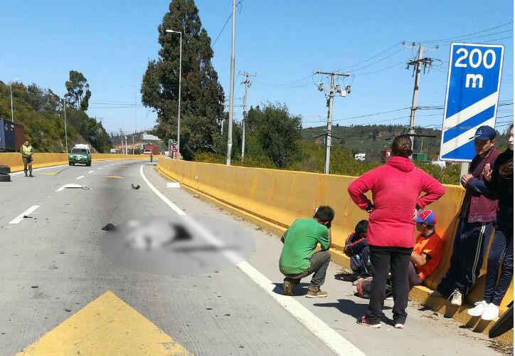 Cedida | Emergencias V Región.