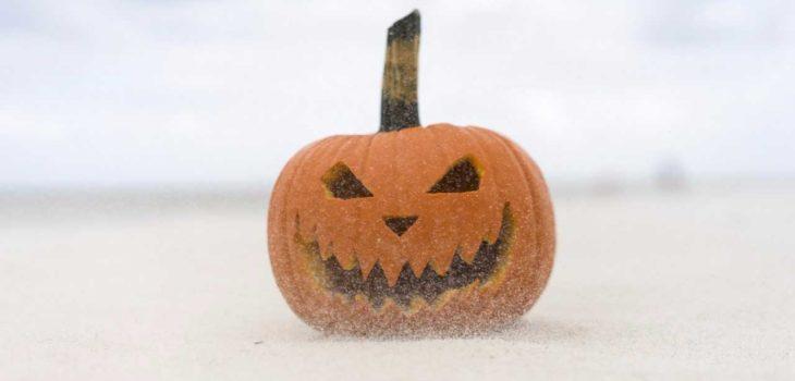 Halloween   Cedida