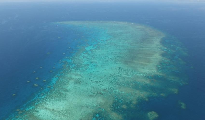 Gran Barrera de Australia | IUCN