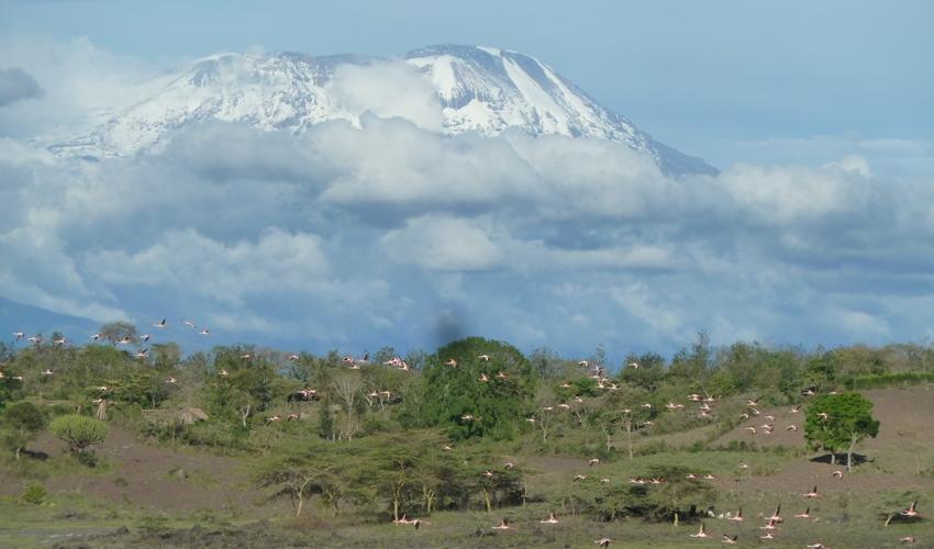 Kilimanjaro en Tanzania | IUCN