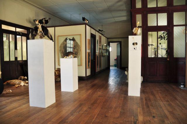 Museo de Historia Natural Río Seco