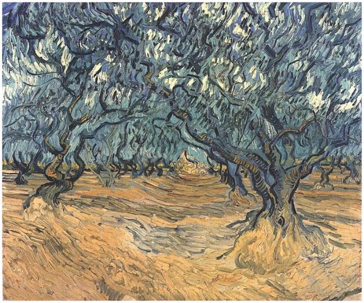 Los Olivos | Vincent Van Gogh