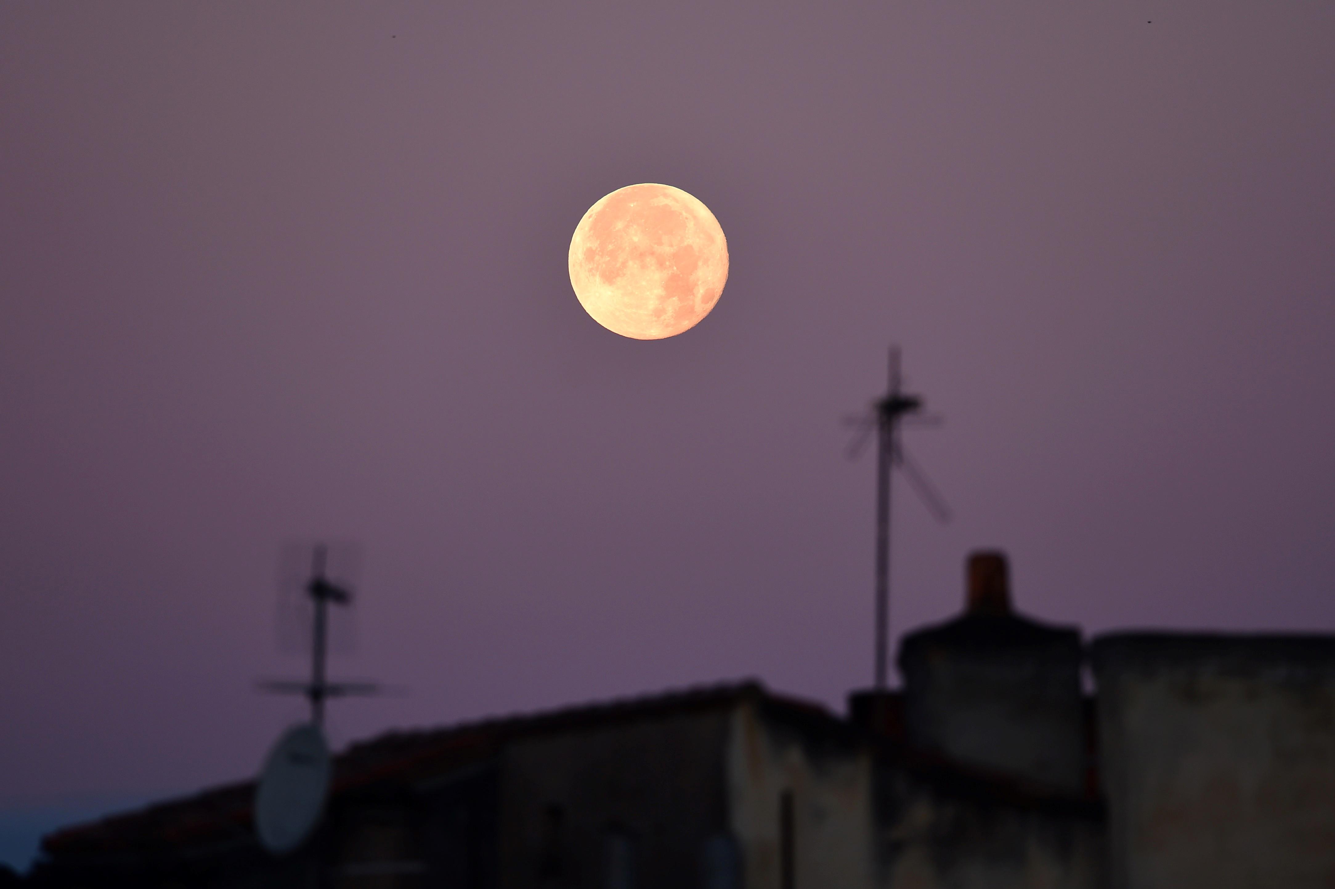Francia |  Nicolas Tucat | AFP