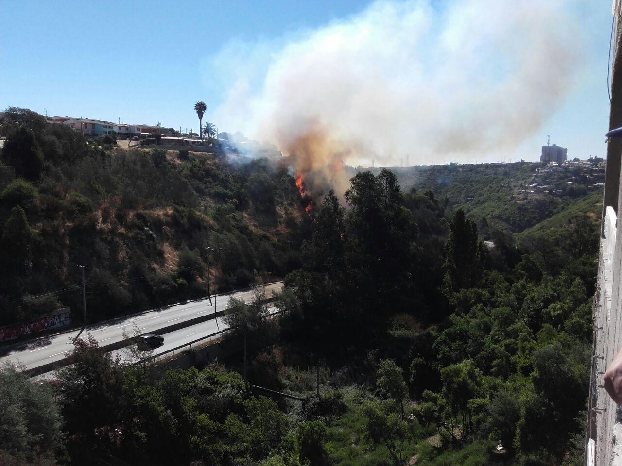 Decretan Alerta Roja para la comuna de Quilpué por incendio forestal