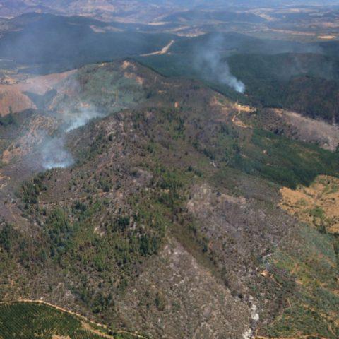 Conaf mantiene lucha contras 6 incendios forestales en la región