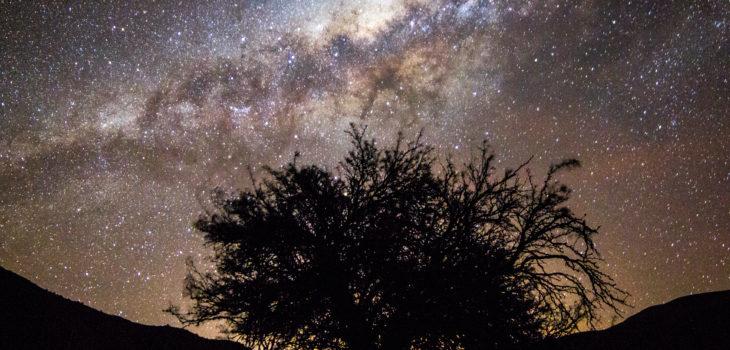 Valle de Elqui | Corfo Coquimbo