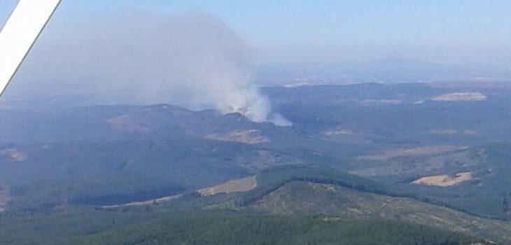 Incendio de Curimaqui | Masisa
