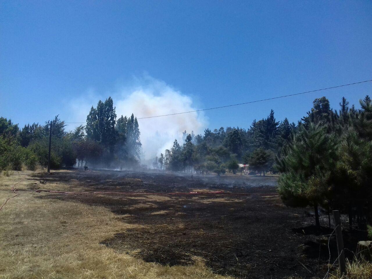 Autoridades cancelan Alerta Amarilla en las comunas de San Gregorio y Mariquina