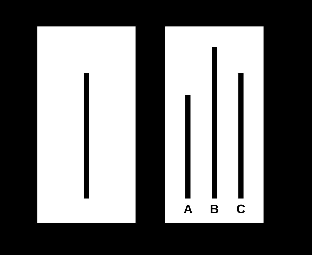 Experimento de Asch | Wikipedia