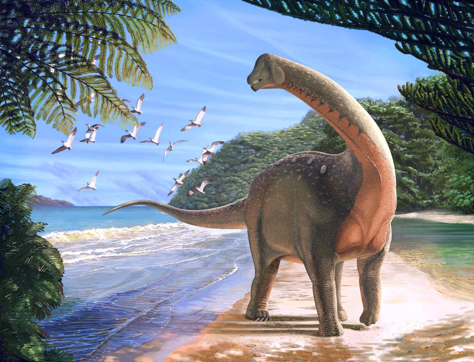 Dinosaurio mansourasaurus shahinae | Carnegie Museum of Natural History | www.carnegiemnh.org