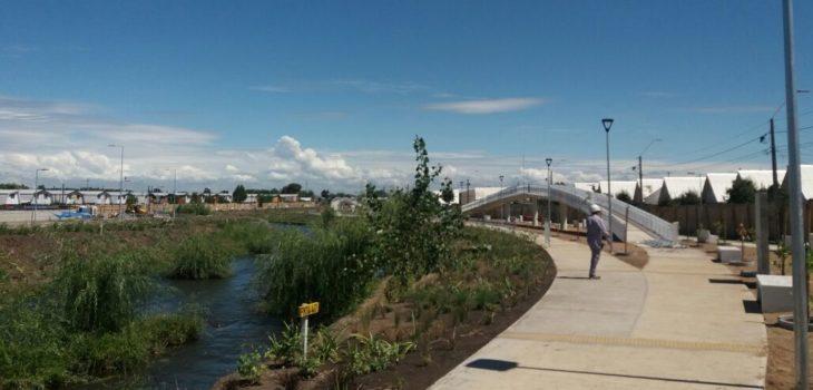 Parque Estero Quilque   Nelson Ojeda (RBB)