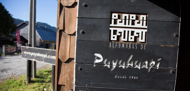 ARCHIVO | puyuhuapi.com