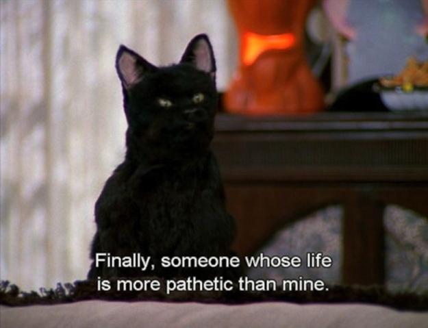 Meme de Salem