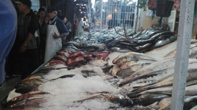 pescados-fiscalizados-en-mercado-central-de-santiago