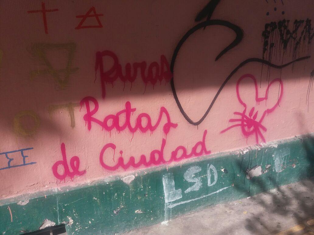 Robinson Cárdenas | RBB