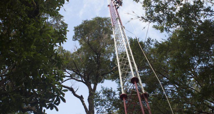 Primera torre de medición. Daniel Casado (IEB)