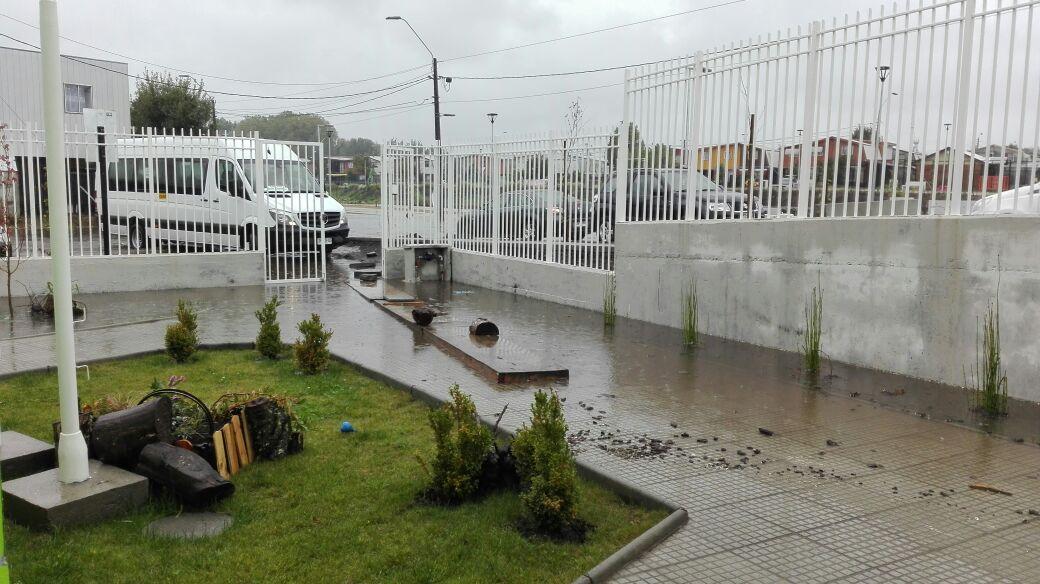 Jardín inundado | Cedida a RBB