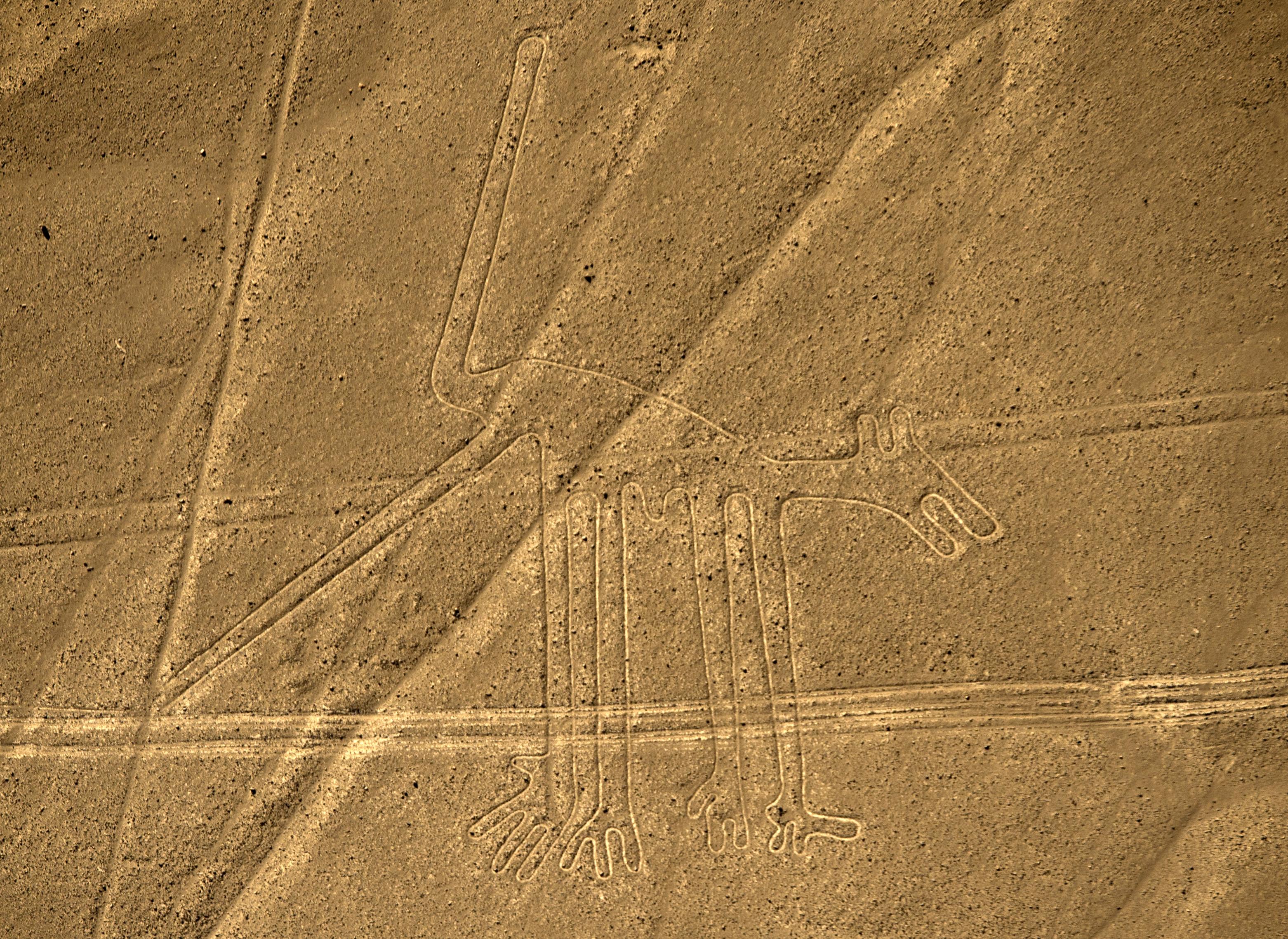 Imagen de las líneas de Nazca de 2014 | Martín Bernetti | Agence France-Presse