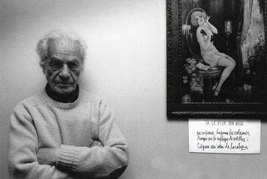 Luis Navarro, Museo Violeta Parra (c)