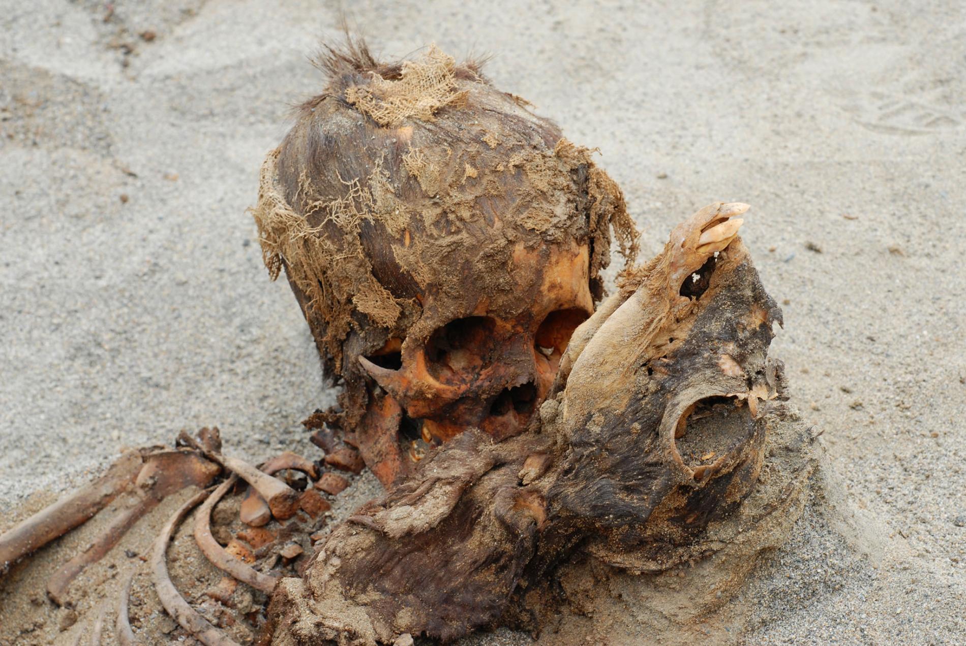 Restos de un niño y una llama | Nationalgeographicla.com