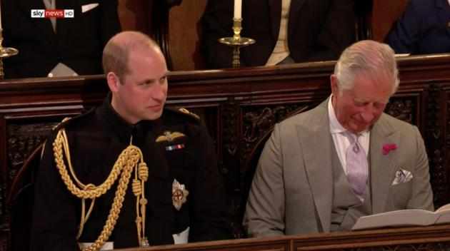 Príncipe Carlos y William