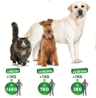 Sobrepeso en perros y gatos | Royal Canin