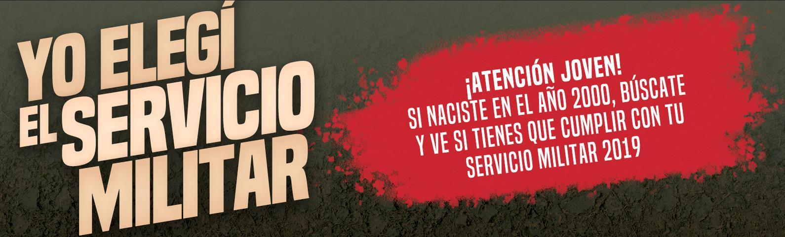 www.serviciomilitar.cl