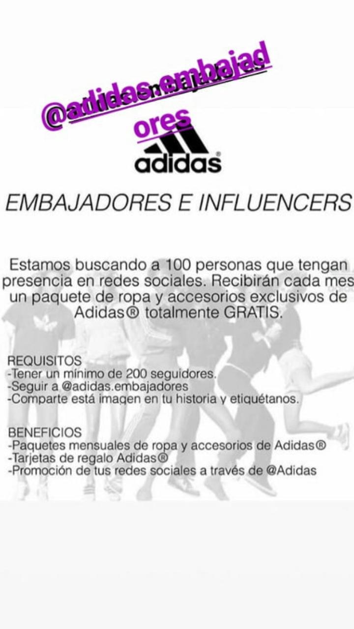 Tranquilidad de espíritu Cerdo Monumental  Adidas advierte sobre falsa información que engañó a aspirantes a  influencers de Instagram | Tecnología | BioBioChile