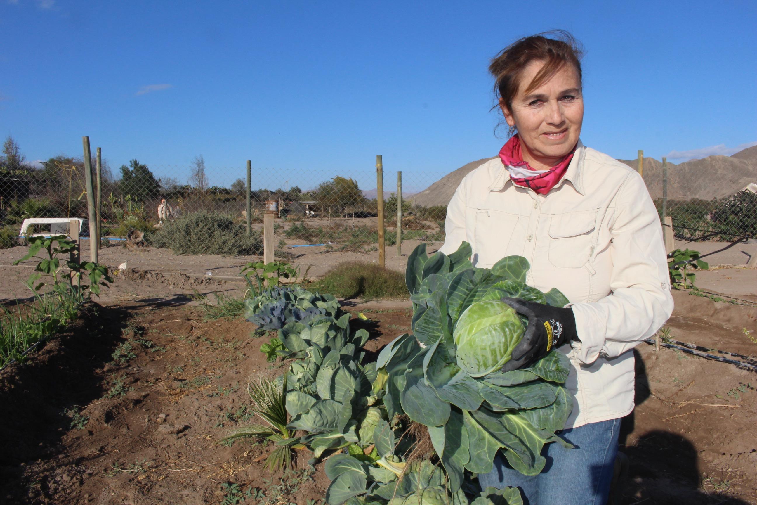 Claudia Soto   Indap