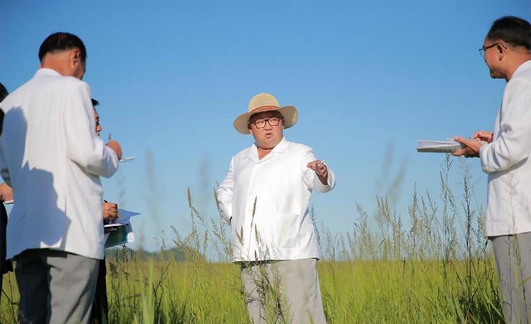 Kim Jong Un en construcción de invernaderos en Kyongsong | KCNA vía KNS | AFP