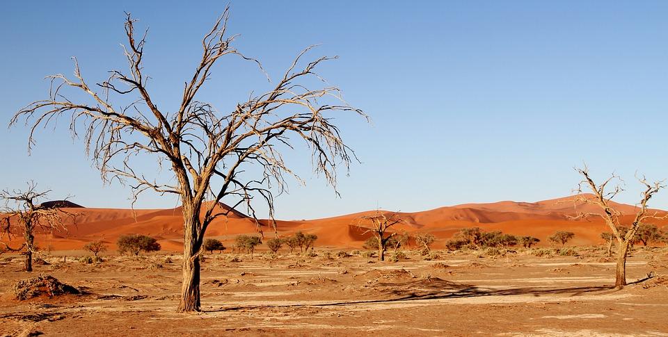 Sequía en �frica | Max Pixel
