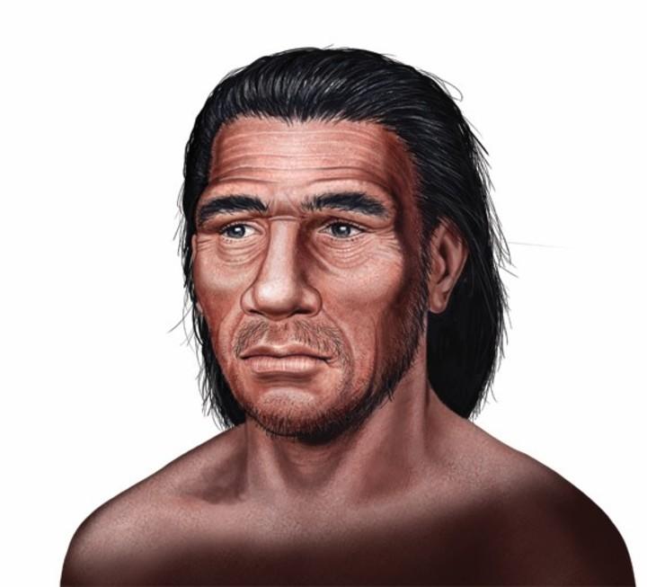Homo neanderthalensis | Ilustración de Néstor Canavarro.