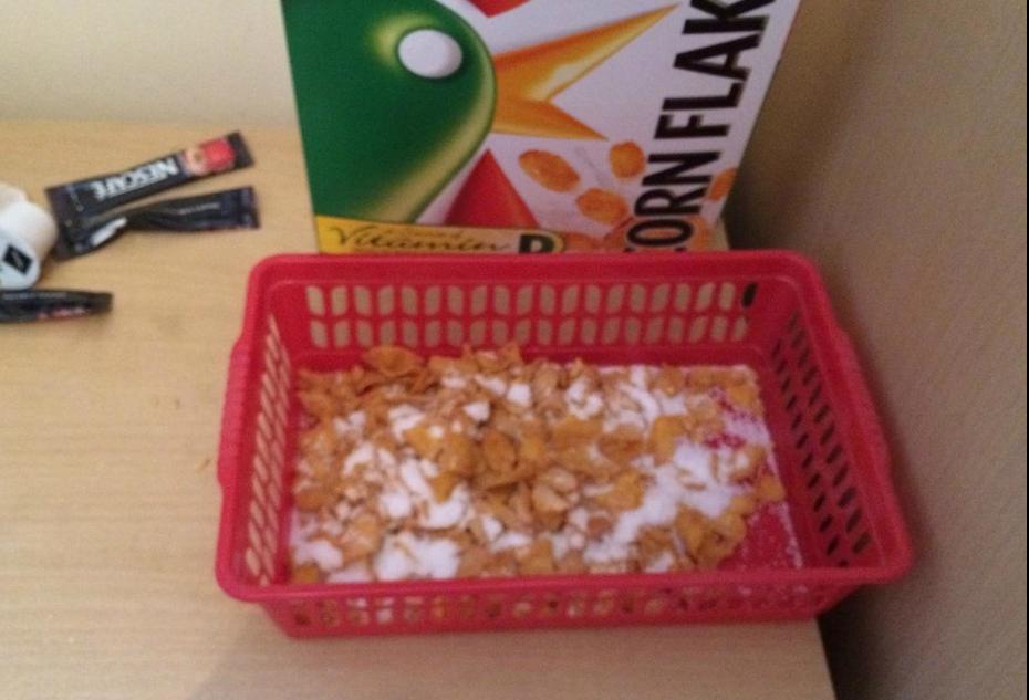 Envase del cereal | Tripadvisor