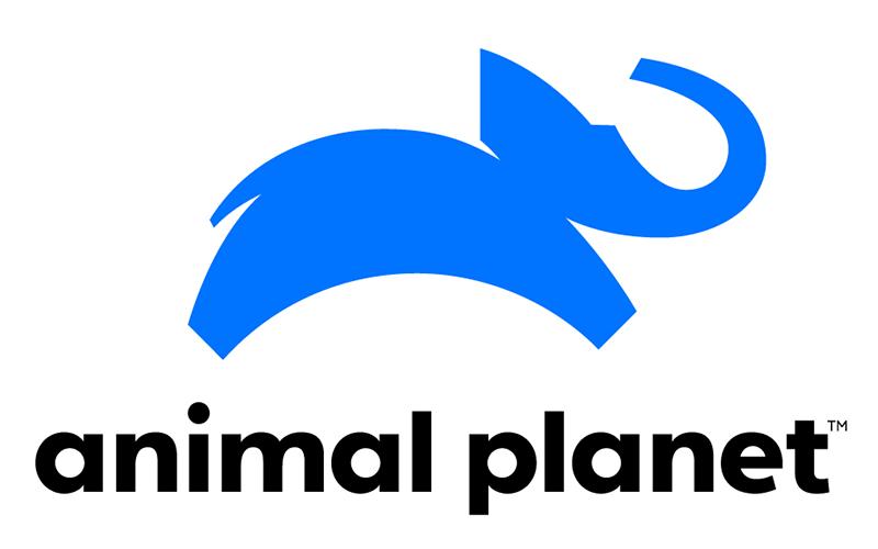 Nuevo logo | Animal Planet