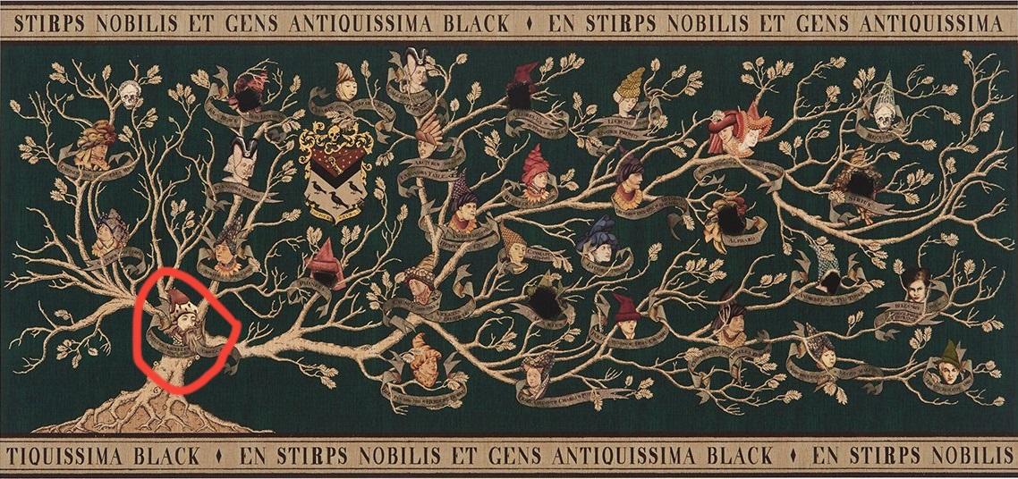 Phineas Nigellus en el árbol genealógico de la Casa de los Black