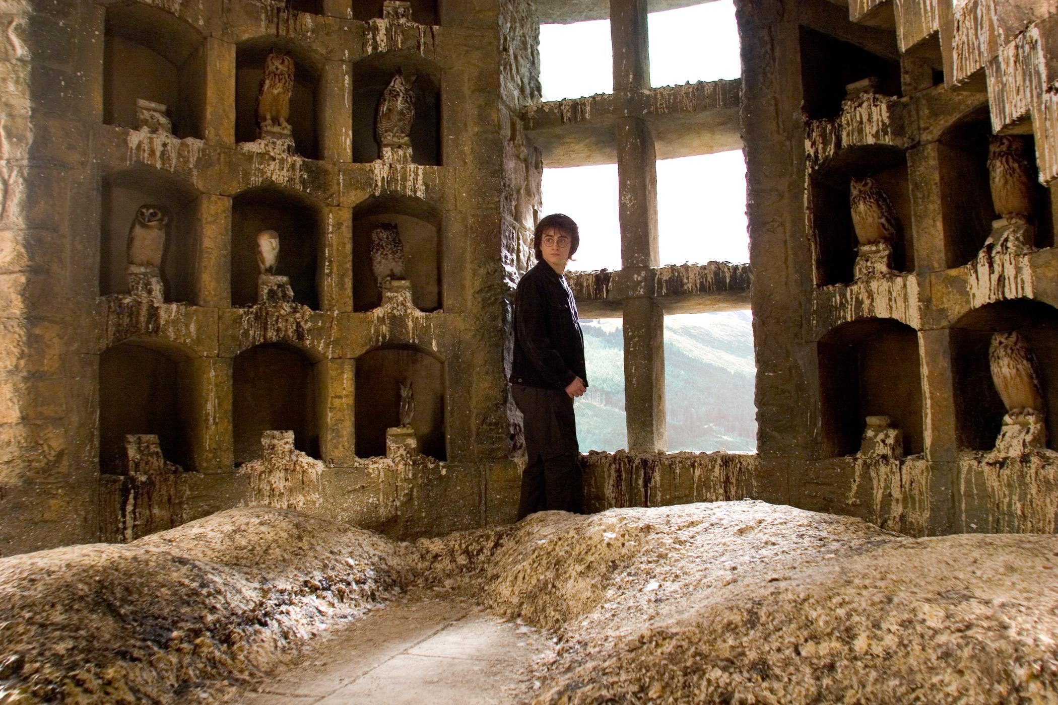 Harry Potter en la Lechucería de Hogwarts | Harry Potter y el Cáliz de Fuego
