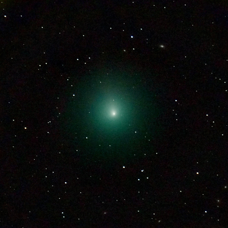 Imagen del Cometa de la Navidad tomada el 3 de diciembre con un telescopio | Nicolas Biver | LESIA | Observatoire de Paris-PSL | Agence France-Presse