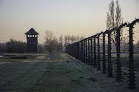 Campo de Birkenau | Wikimedia Commons