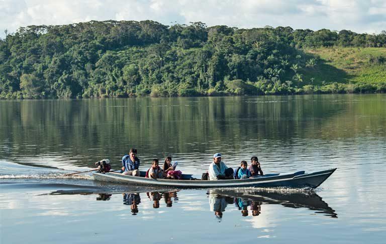 Los pueblos tradicionales de Rondonia y sus medios de vida se encuentran amenazados por causa del flujo masivo de familias en búsqueda de tierras y por los ganaderos. Imagen de WWF Brasil.